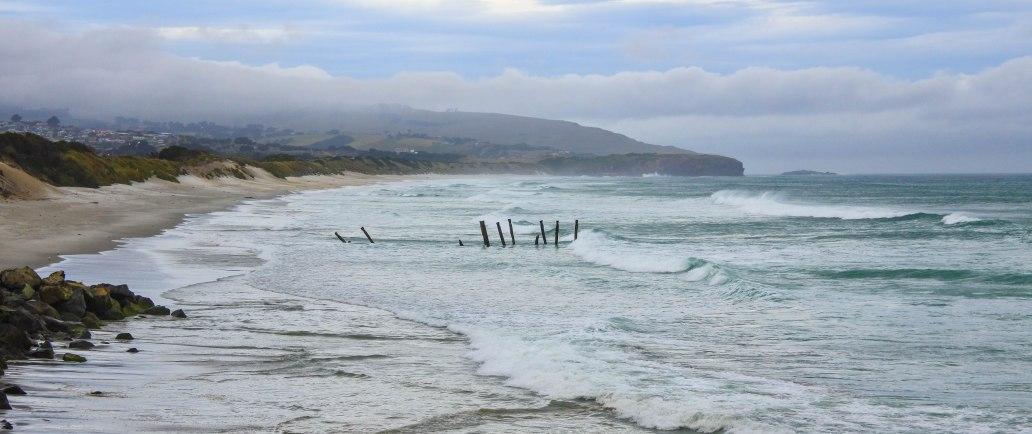 St Clair Beach Dunedin.jpg