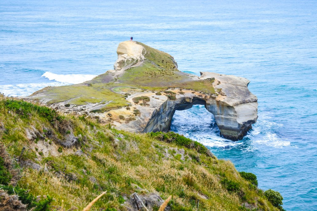 tunnel-beach-dunedin-5