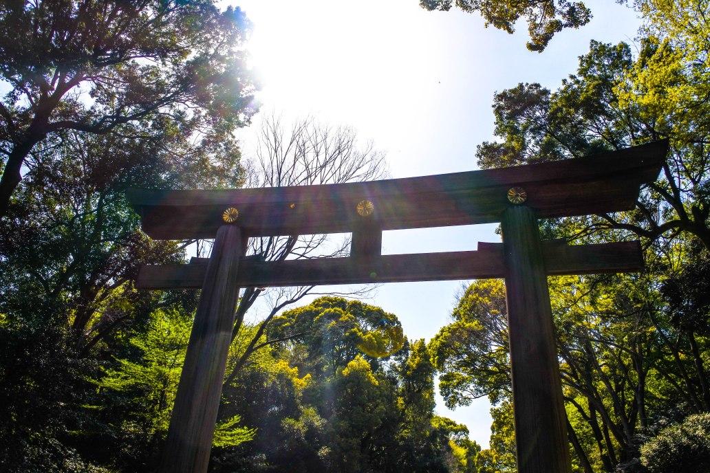 Entrance Gate Meiji Jingu.jpg